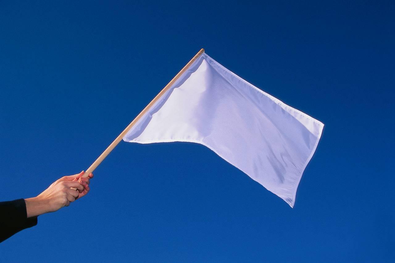 Šta znači sanjati zastavu